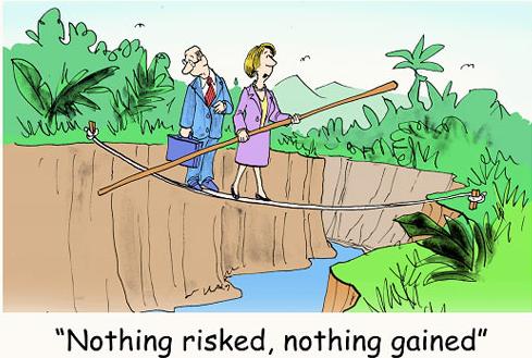 Reward to Risk Cartoon